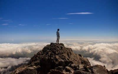 Return on Experience (ROX) in der digitalen Welt